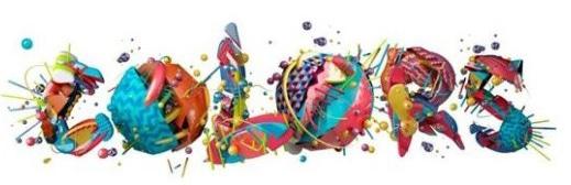 festival colors drone vendee